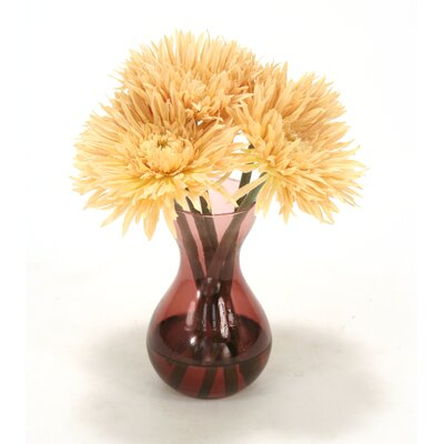 Waterlook Beige Spider Gerbera Daisies in Plum Glass Vase (Set of 2)