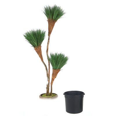 Grass Pom Pom Tree in Planter T611-7