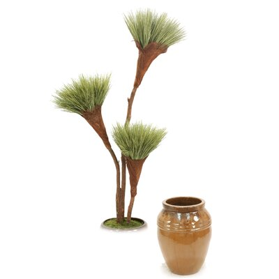 Basil Grass Pom Pom Tree in Pot T614-7-G36