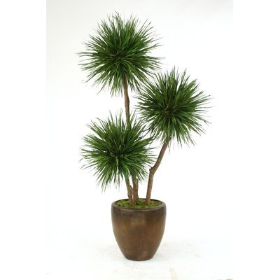 Pom Pom Tree in Planter T615-8-G19LBR