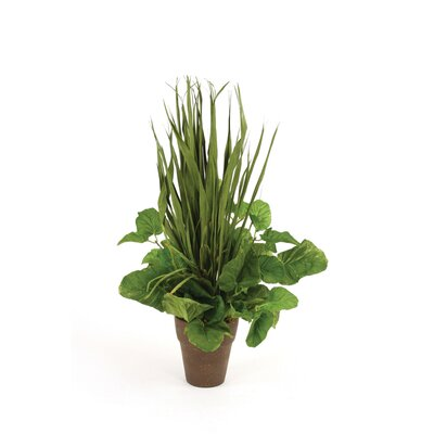 Green Foliage, Blade and Grass Mix Floor Plant in Pot 2278
