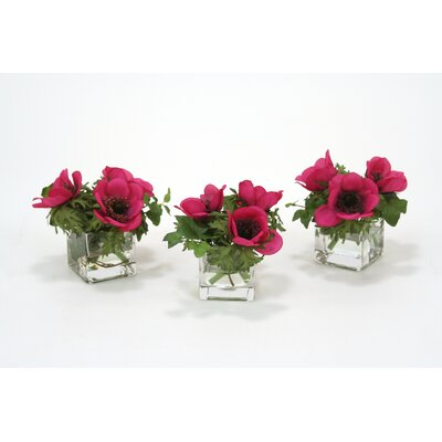 Waterlook Dark Violet Anemones and Ivy in Square Glass Vase (Set of 3)