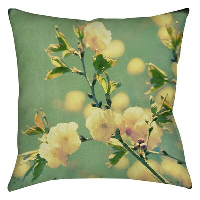Vintage Botanicals 4 Indoor/Outdoor Throw Pillow Size: 16 H x 16 W x 4 D