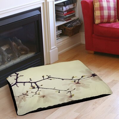 The Soft Explosion Indoor/Outdoor Pet Bed Size: 50 L x 40 W