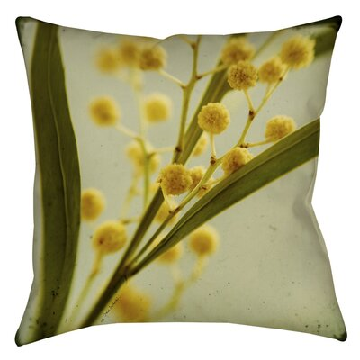 Vintage Botanicals 1 Indoor/Outdoor Throw Pillow Size: 16