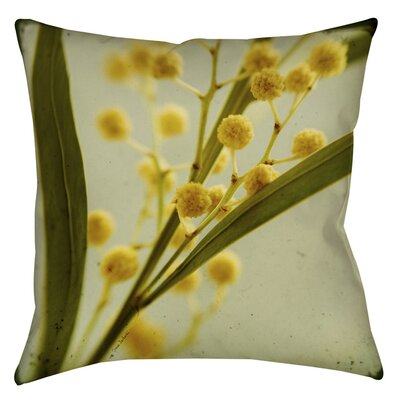 Vintage Botanicals 1 Printed Throw Pillow Size: 18 H x 18 W x 5 D