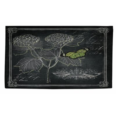 Chalkboard Botanical 1 Black/White Area Rug Rug Size: 2 x 3