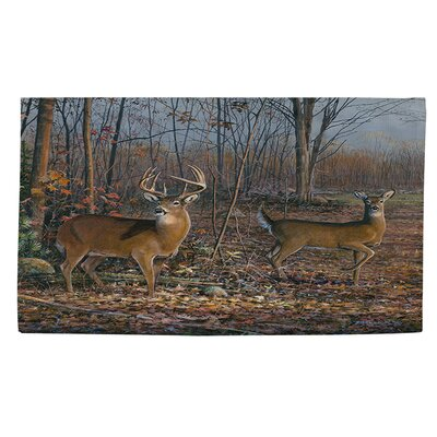 Lovers Lane Brown Area Rug Rug size: 4 x 6