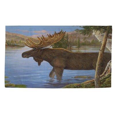 Majestic Moose Teal Area Rug Rug size: 4 x 6