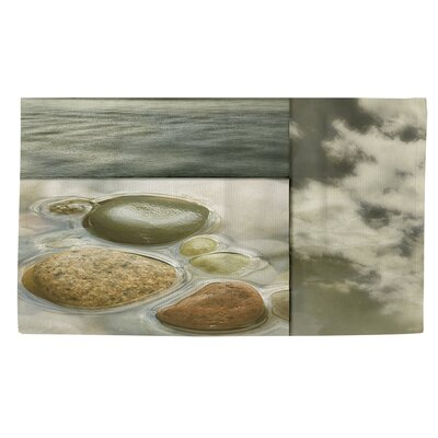 Natural Elements 3 Green Area Rug Rug size: 4 x 6