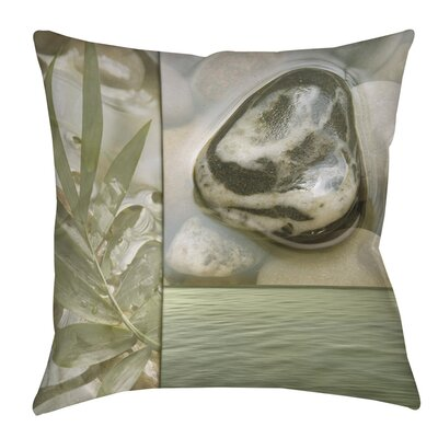 Natural Elements 4 Indoor/Outdoor Throw Pillow Size: 20 H x 20 W x 5 D