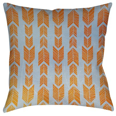 Featherwood Indoor/Outdoor Throw Pillow Size: 16 H x 16 W x 4 D, Color: Orange