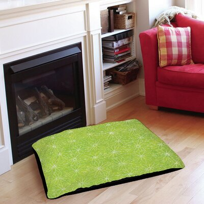Funky Florals Daisy Sketch Pet Bed Size: 28 L x 18 W, Color: Lime