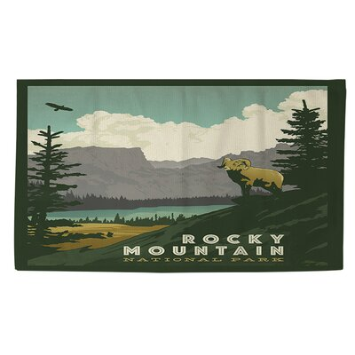 Rocky Mountain National Park Area Rug Rug Size: 2 x 3