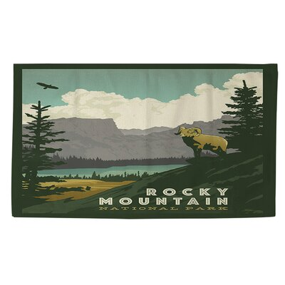 Rocky Mountain National Park Area Rug Rug Size: 4 x 6