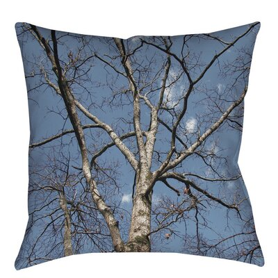 Reach for the Sky Indoor/Outdoor Throw Pillow Size: 16 H x 16 W x 4 D