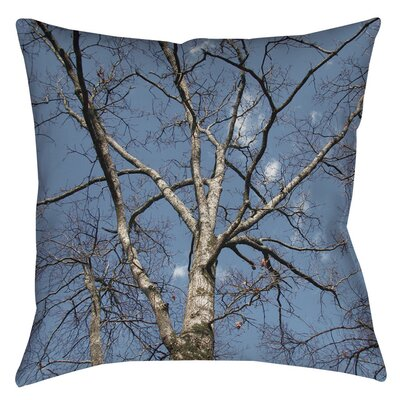 Reach for the Sky Printed Throw Pillow Size: 20 H x 20 W x 5 D