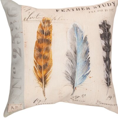 Natures Nest Feathers Throw Pillow