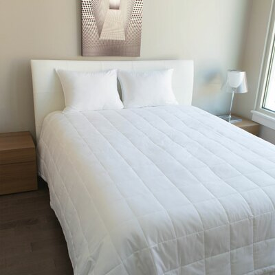 Luxury PrimaLoft Cotton Comforter Size: Twin
