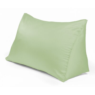Reading Wedge Pillow Cover Color: Vintage Green