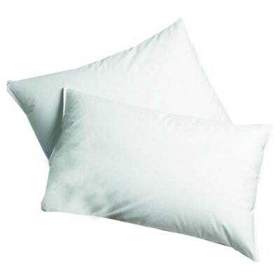 DOWNLITE Sleep Balance Hypoallergenic Down and Feather Chamber Pillow - Size: Jumbo at Sears.com