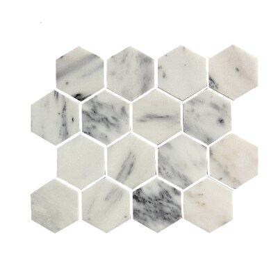 2.75 x 3.25 Stone Mosaic Tile in White
