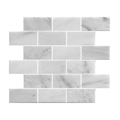 2.88 x 3.88 Stone Mosaic Tile in White