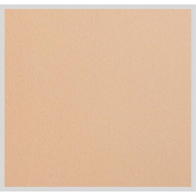 11.88 x 11.75 Terracotta Field Tile in Cappuccino