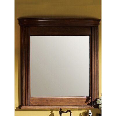 "48"" H x 33"" W Vanity Mirror"