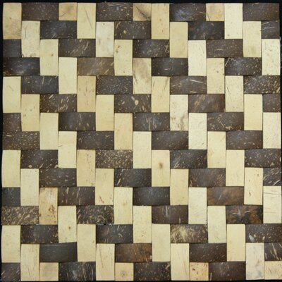 0.75 x 1.5 Coconut Mosaic Tile in Matte Coconut and wood