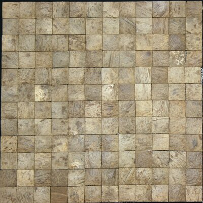 0.94 x 0.94 Coconut Mosaic Tile in Multi