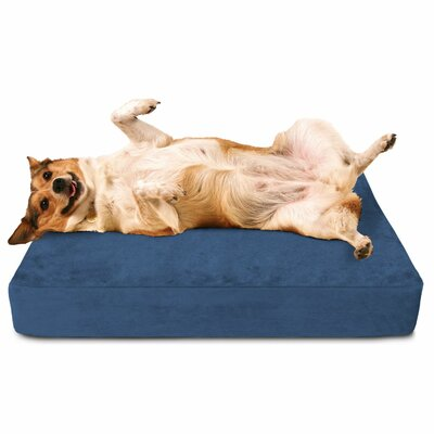 Crypton Dog Bed with Waterproof Cover Color: Blue Curacao