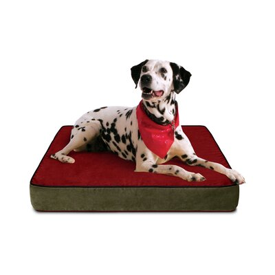 Gel Memory Foam Dog Bed with Microfiber Cover Color: Red/Black