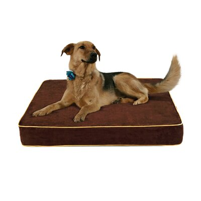 Pandora Gel Memory Foam Dog Bed with Microfiber Cover Color: Brown