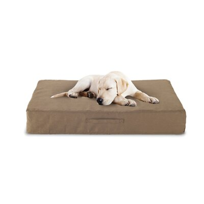 Luxury Memory Foam Dog Bed with Microfiber Cover Size: Medium (32 L x 22 W)