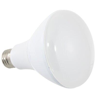LED Light Bulb Wattage: 12W