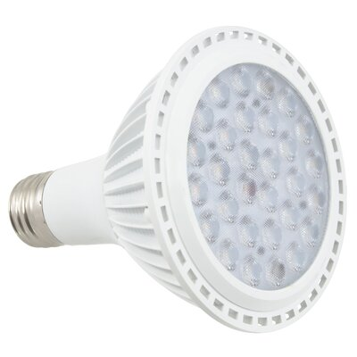 LED Light Bulb Wattage: 12W