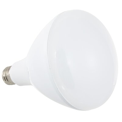 LED Light Bulb Wattage: 16W