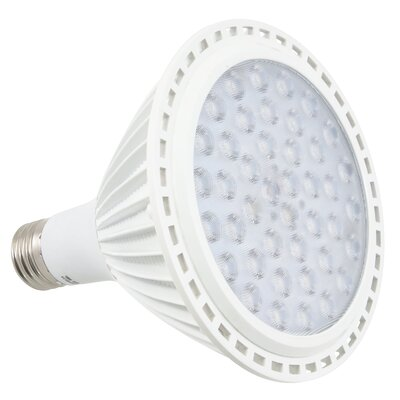 LED Light Bulb Wattage: 16W