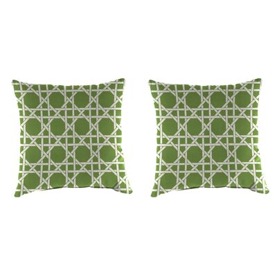 Indoor/Outdoor Throw Pillow Farbic: Kane Palm