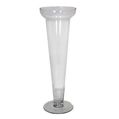 "Glass Vase Size: 23"" H"" x 6.5"" W x 6.5"" D EN80195"