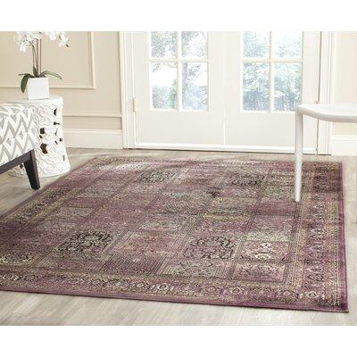 Todd Purple/Fuchisa Area Rug Rug Size: Rectangle 53 x 76