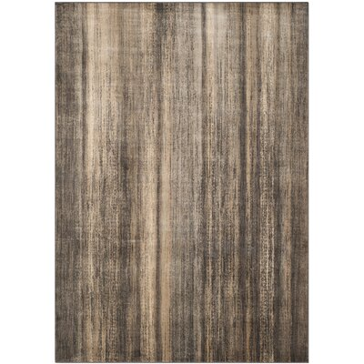 Coppage Soft Anthracite Brown Area Rug Rug Size: Rectangle 67 x 92
