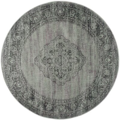 Makenna Light Blue Outdoor Area Rug Rug Size: Round 8