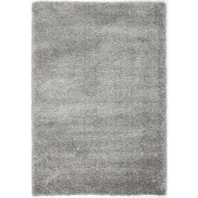 Jonathan Shag Silver Area Rug Rug Size: Rectangle 4 x 6