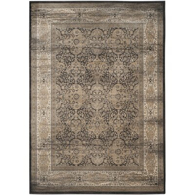Mainville Black Area Rug Rug Size: Rectangle 8 x 11