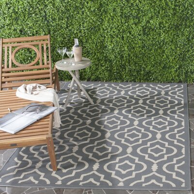 Octavius Anthracite/Beige Indoor/Outdoor Area Rug Rug Size: Rectangle 8 x 11