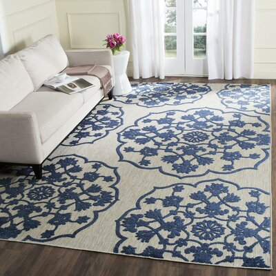 Oakmont Indoor/Outdoor Area Rug Rug Size: 67 x 96