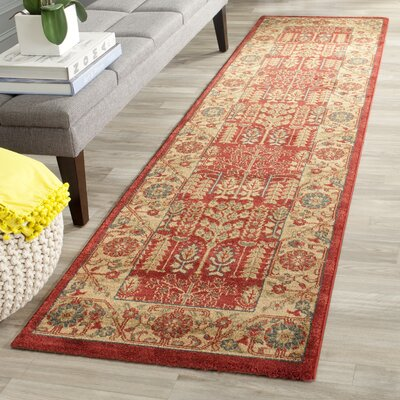 Coleraine Red Area Rug Rug Size: Runner 22 x 8