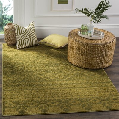 St. Ann Highlands Green Area Rug Rug Size: Rectangle 6 x 9